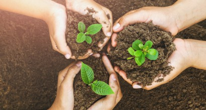 Sustainable Talent May Require Growing Your Own